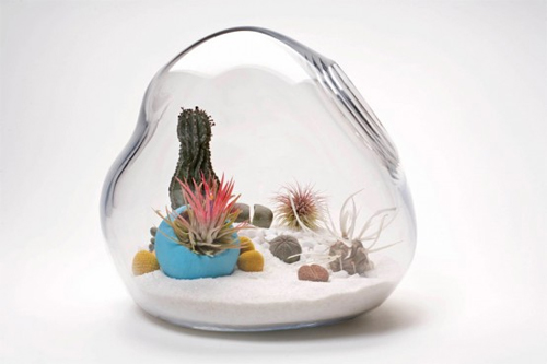 10 Cool Tabletop Terrariums