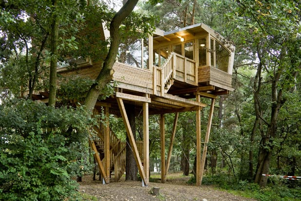 Picture of cool treehouses for Treehouse designers