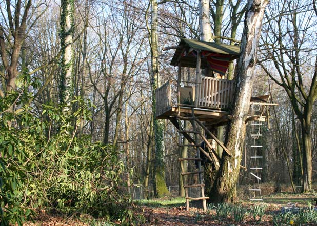 Picture Of Cool Treehouses