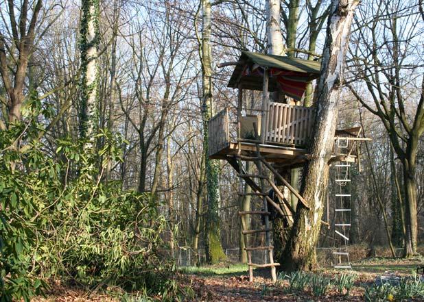 cool kids tree house ideas - Cool Kids Tree House