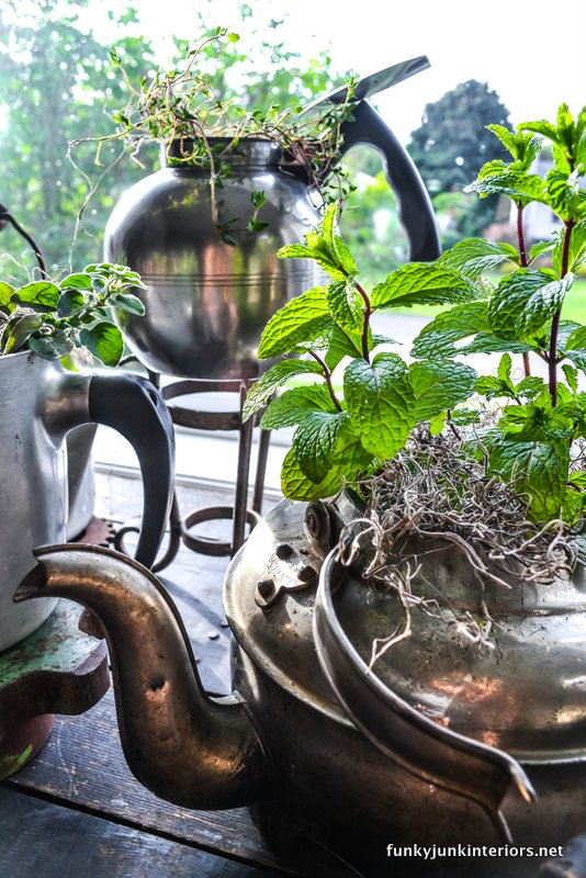 Cool Vintage Garden Of Old Fashioned Kettles
