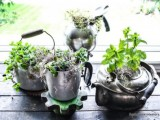 tabletop garden of old kettles