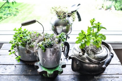tabletop garden of old kettles (via shelterness)