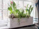 diy white wine crate planter