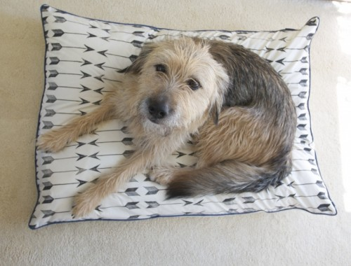 block printed dog bed (via redhousewest)