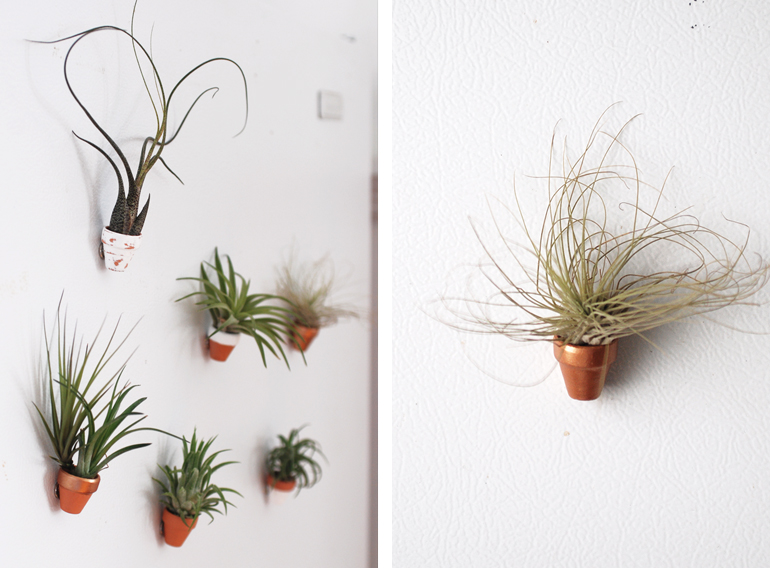 Picture of mini clay pot magnets for Air plant decoration