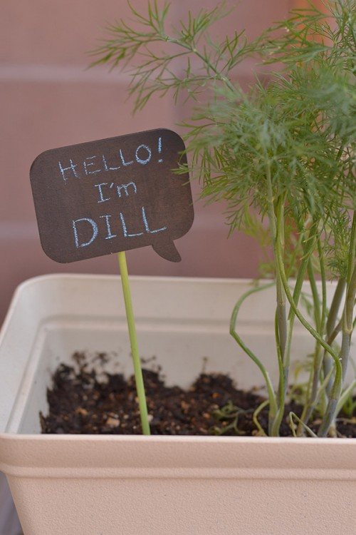 chalkboard garden markers (via areal-lifehousewife)