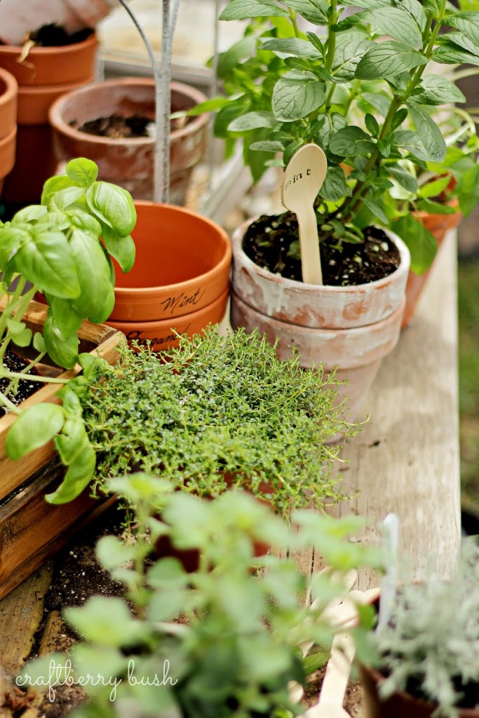 wooden spoon herb markers