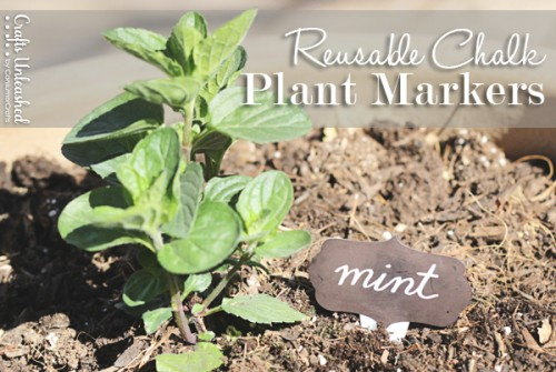 reusable plant markers (via craftsunleashed)