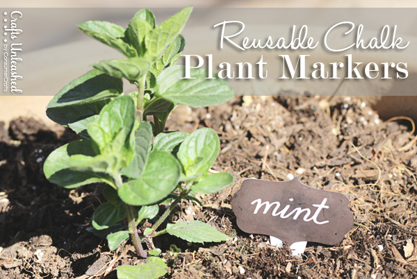 reusable plant markers