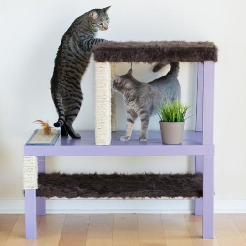 cat condo hack (via shelterness)