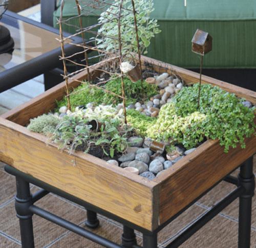 tabletop miniature garden