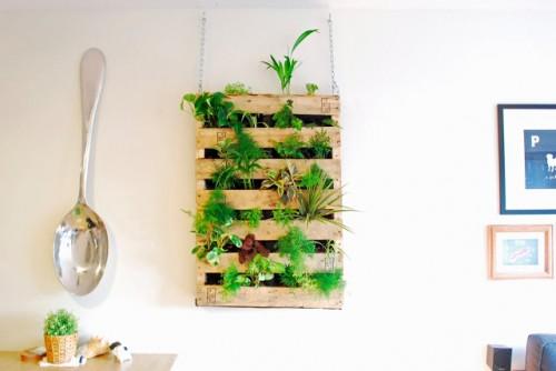 pallet living wall garden via beersnbeans - Diy Indoor Garden