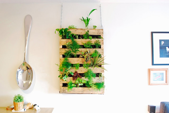 Creative diy indoor gardens1