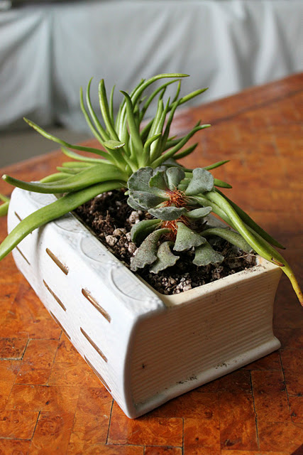 ceramic book garden (via shelterness)