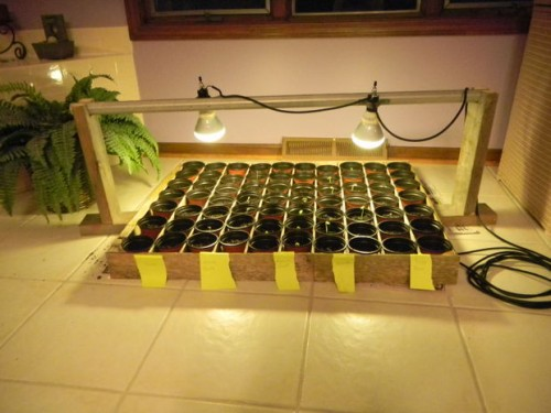 indoor seed starting system (via instructables)