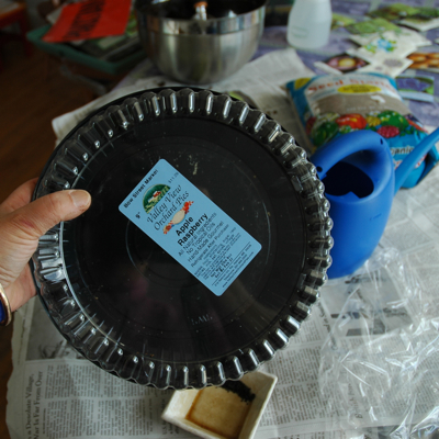 self-watering seed starter (via containergardening)