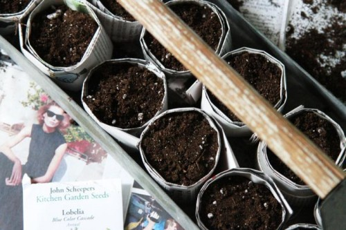 newspaper seed starting pots (via gardenista)