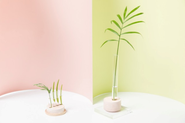 Picture Of cute and simple diy oslo bud vases  1