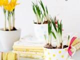 cute-decoupage-diy-spring-inspired-planters-4