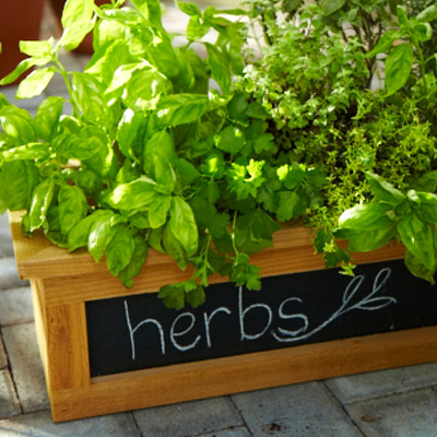 chalkboard planter box (via homedepot)