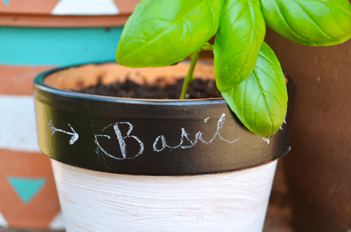 chalkboard herb pot (via fineandfeathered)
