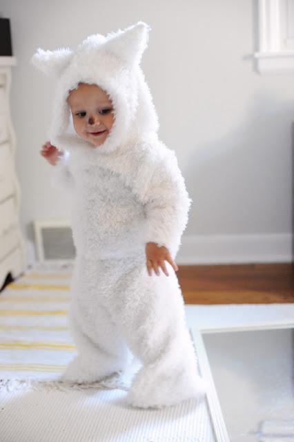 white pup costume (via rustandsunshine)