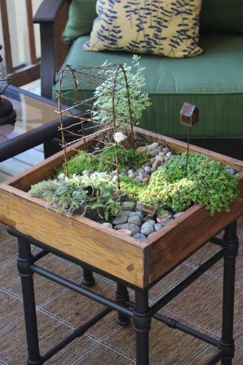 Cute DIY Tabletop Mini Garden