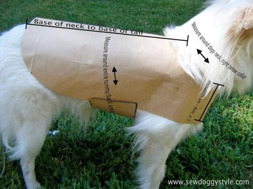 dog coat pattern (via sewdoggystyle)