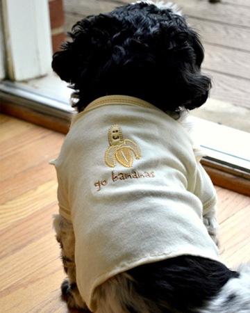 dog shirt of baby clothes (via sheknows)
