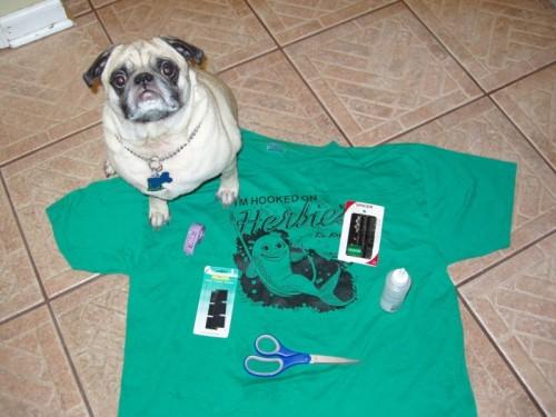 doggie t-shirt (via instructables)