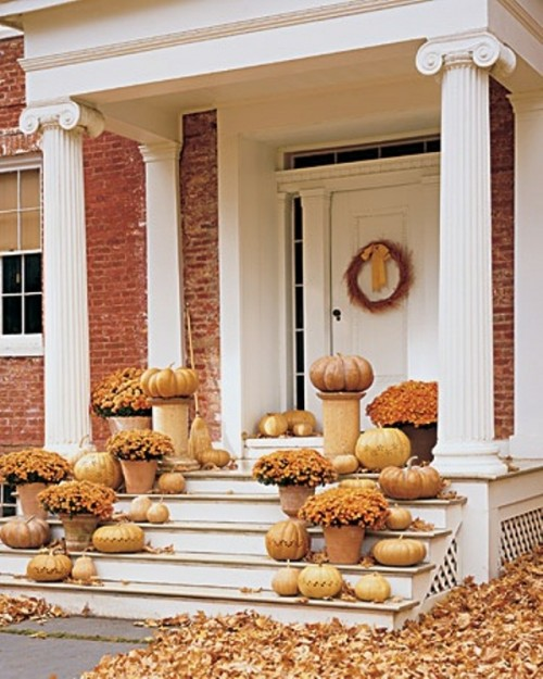 In case you love monochrome color schemes, choose fall blooms in the same color as pumpkins. They would look great mixed with dried leaves lying all around.