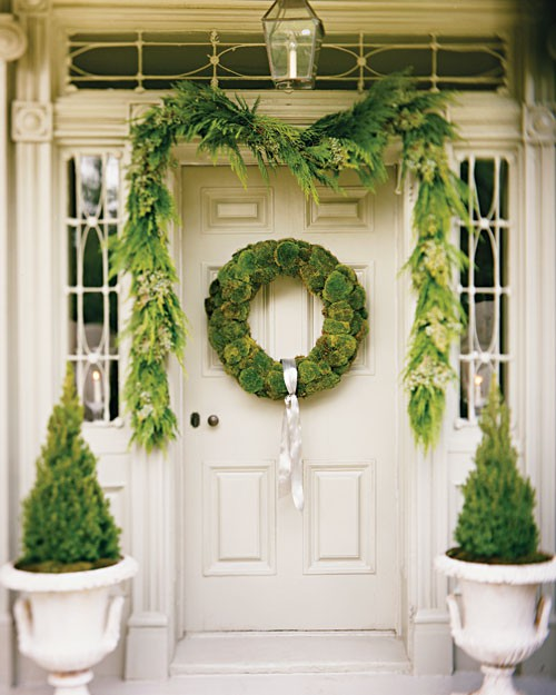 Decorating Your Interior With Moss