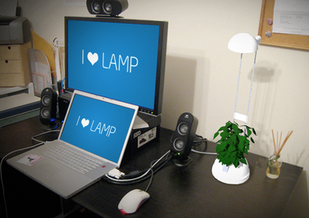 Desk Lamp And A Flower Pot