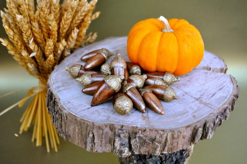 holiday gold acorns