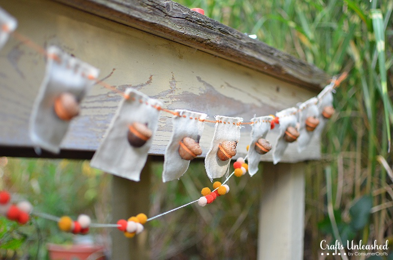 acorns bunting