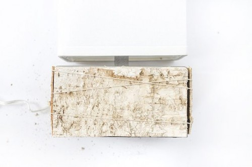 DIY Birch Bark Lamp For A Chic Rustic Touch