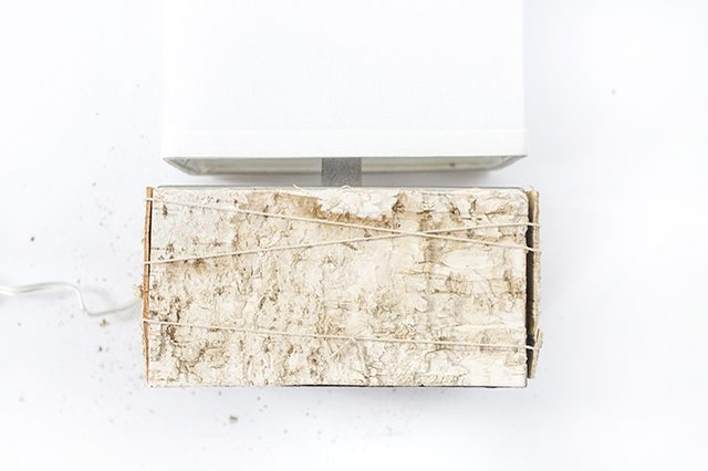 Picture Of diy birch bark lamp for a chic rustic touch  7