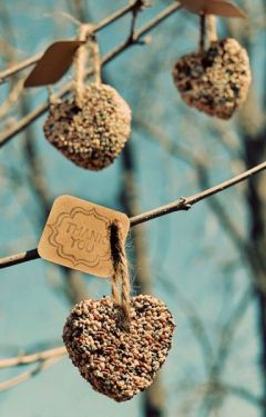 traditional birdseed ornaments (via huffingtonpost)
