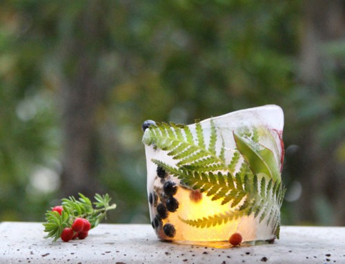 DIY Botanical Ice Luminaries For Outdoors