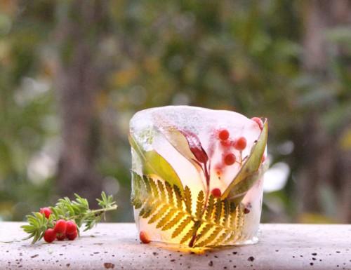 DIY Botanical Ice Luminaries For Outdoors