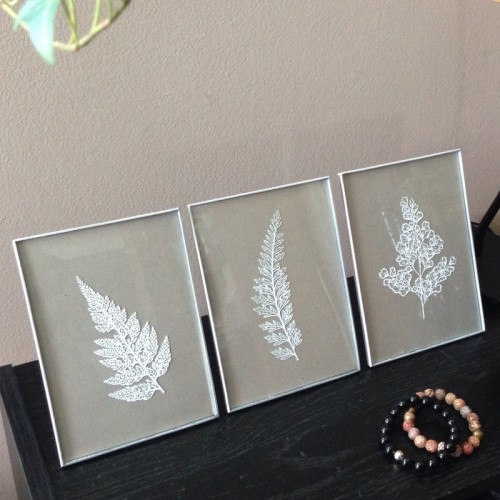 white framed botanicals (via 365designs)