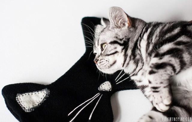Diy Cat Eye Mask For A Comfortable Sleep