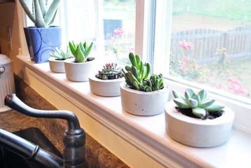 DIY Cement Indoor Planters Shelterness