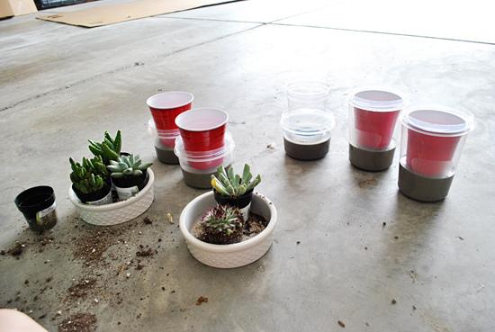 Diy Cement Indoor Planters