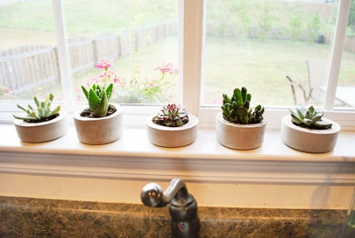 Diy Cement Indoor Planters