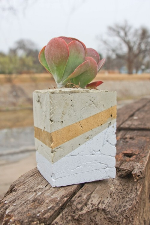 Cool DIY Cement Planters For Succulents