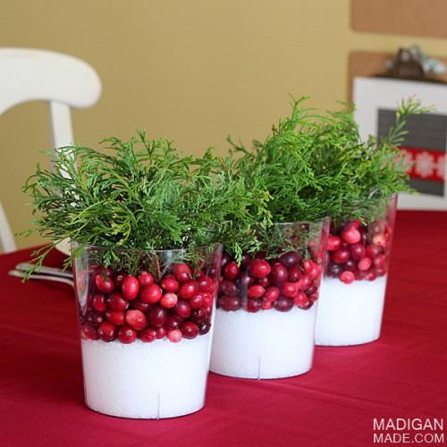 easy cranberry centerpiece (via madiganmade)
