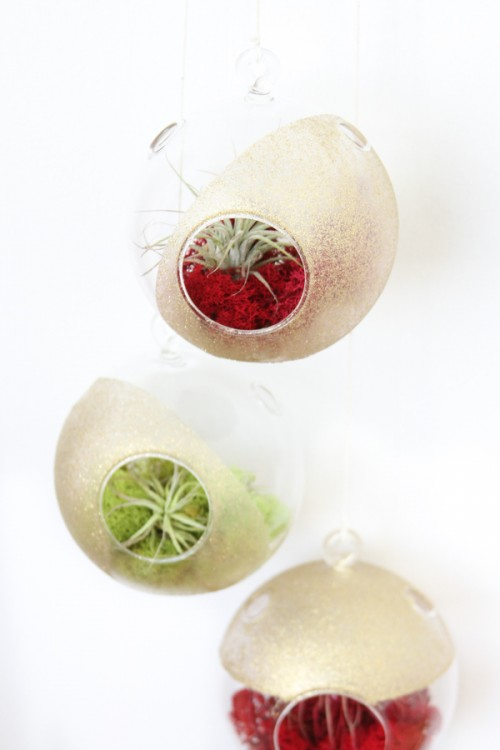 dipped Christmas terrariums (via blog)