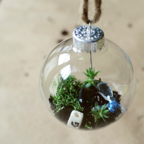 mini succulent terrarium ornament (via farmfreshtherapy)